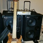 """""""My David Dyson signature Skjold bass rockin' the super comfortable black GRUV GEAR solo neo strap, Dunlop stainless steel strings and going through 2000 watts of Wayne Jones thunder!"""""""