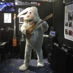 Funky Bunny with a Fodera Monarch 5 Deluxe bass guitar