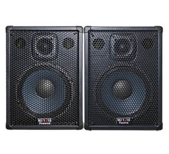 Wayne Jones Audio - 1000 Watt 1x10 Stereo/Mono Bass Cabinets for bass guitars and also great for guitars and vocals